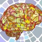 皮膚と脳は繋がっている