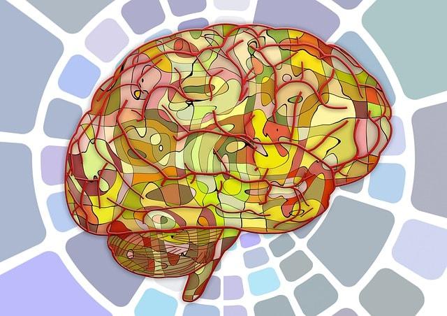 brain-951847_640-min