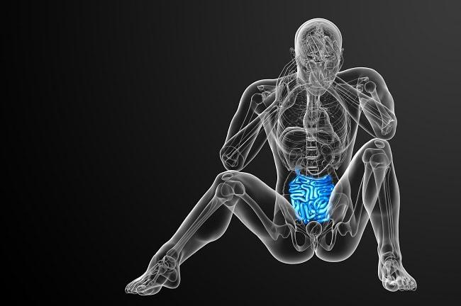 腸内環境とニキビ